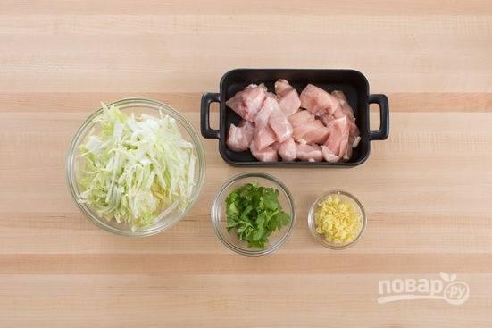 1. Первым делом вымойте и обсушите куриное филе, нарежьте небольшими кубиками. Нашинкуйте капусту. Очистите небольшой корень имбиря и натрите на терке. Вымойте и обсушите зелень.