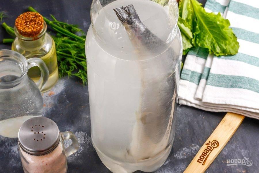 Залейте в бутылку рассол и поместите емкость на холод, на 3 дня. В течение этого времени переворачивайте рыбу для равномерного посола.