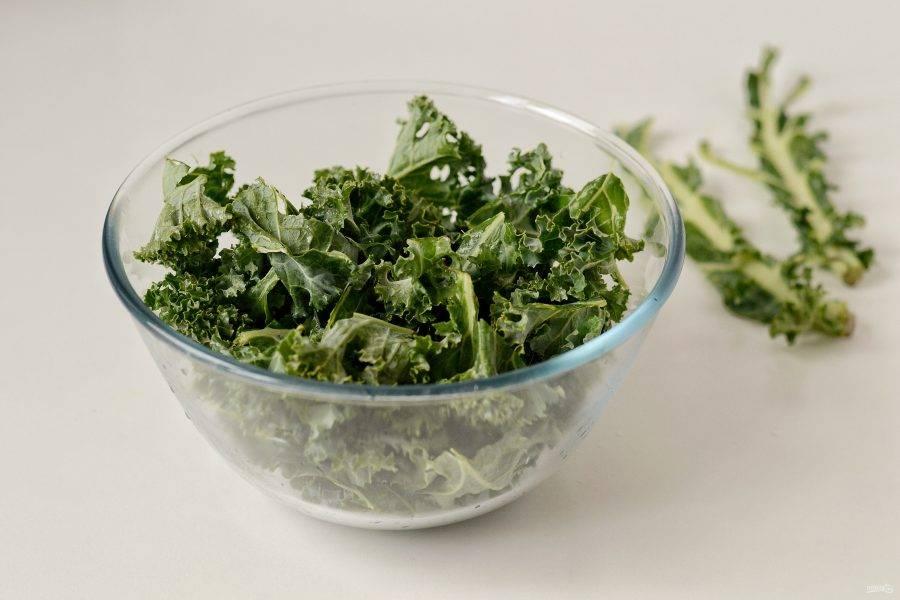 Листья кейла помойте и обсушите с помощью кухонного полотенца. Удалите листья со стебля, затем прорвите их на кусочки.