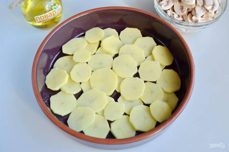 4. Огнеупорную форму смажьте хорошо растительным маслом, зубчик чеснока разрежьте на части и натрите ним форму. Это сделает запеканку ароматной. Выкладывайте картофельные кружочки в один слой, можно немного внахлест. Посолите и поперчите, сбрызните растительным маслом.