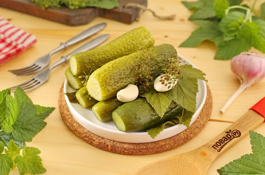 Малосольные огурцы с листьями хрена и смородины