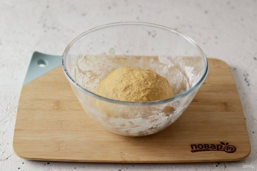 Переложите тесто в миску и уберите в теплое место, пока оно не увеличится в два раза.