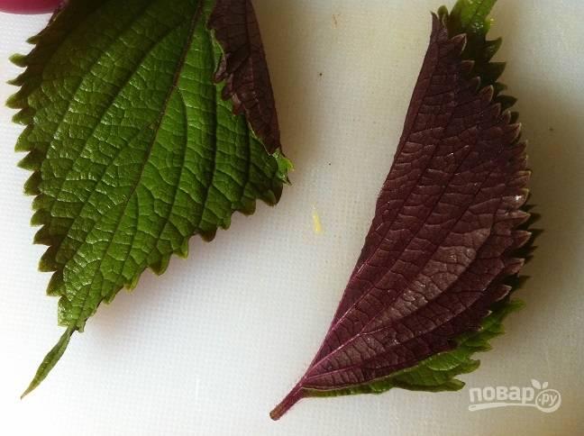 3. Все листья промойте, обсушите и нарвите. Перец мелко нарубите.