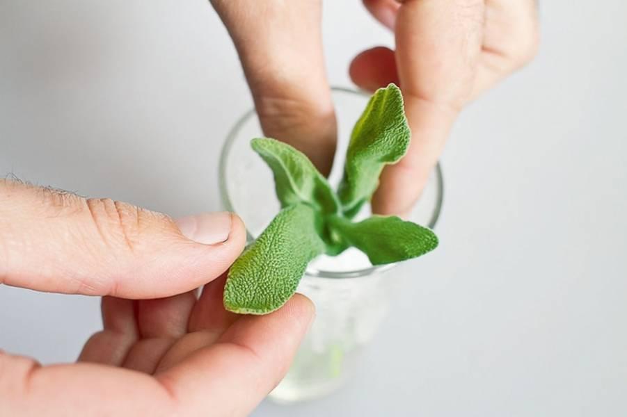 Четверть лайма разрежьте на ломтики. Измельчите лёд: это можно сделать при помощи мощного блендра или вручную, положив лёд в ткань и отбив его скалкой. В стакан выложите лайм, добавьте к нему шалфей.