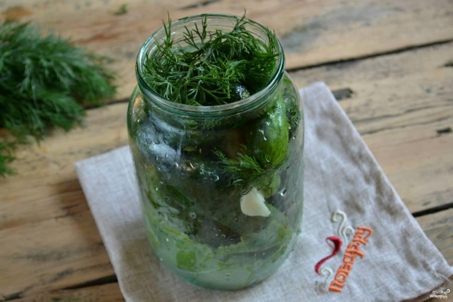 На дно чистой (можно не стерилизовать) банки ёмкостью 1 литр, положите листья хрена и щирицы, перец горошком и несколько зубчиков чеснока. Плотно сложите огурцы, слегка переложив их зеленым укропом.