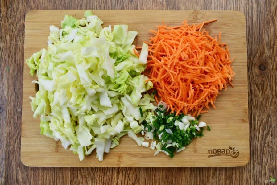 Капусту нарежьте на кусочки шириной 1см  и длиной 3 см, морковь натрите на корейской терке. Чеснок и зеленый лук измельчите.