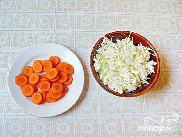 1.В первую очередь очищаем и нарезаем морковь, кружочками нашинковать тоненько молодой капусты.  Чтобы блюдо не получилось не полезным и не вкусным - главное не передерживать молодые овощи при варке. В кипящую воду бросаем капусту и морковь.