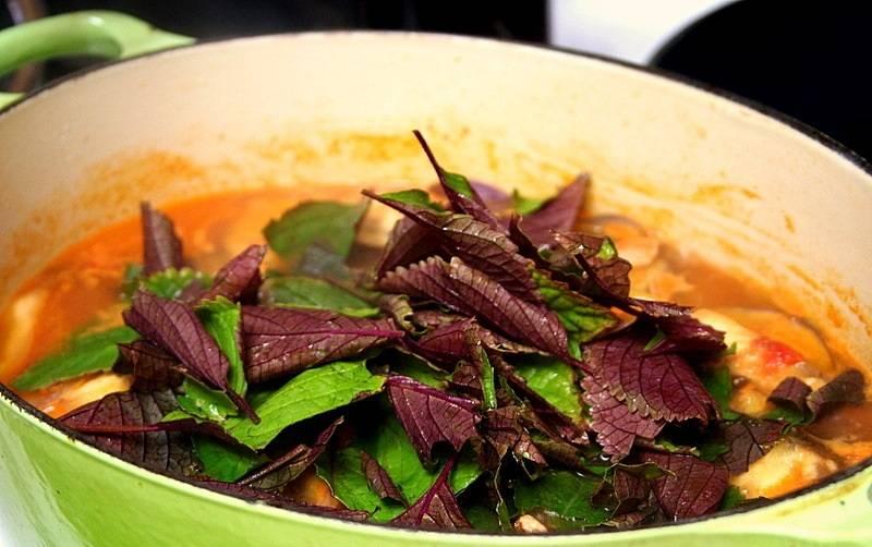 5. За 2-3 минуты до готовности можно добавить в сотейник свежей зелени. Затем блюдо можно снимать с огня и подавать к столу. При желании можно дополнить его гарниром.
