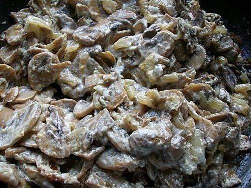 Пока тесто отдыхает, на сковороде обжарьте лук, добавьте кусочки курицы, через 10 минут добавьте порезанные грибы. Жарьте до готовности, добавьте специи и сметану.