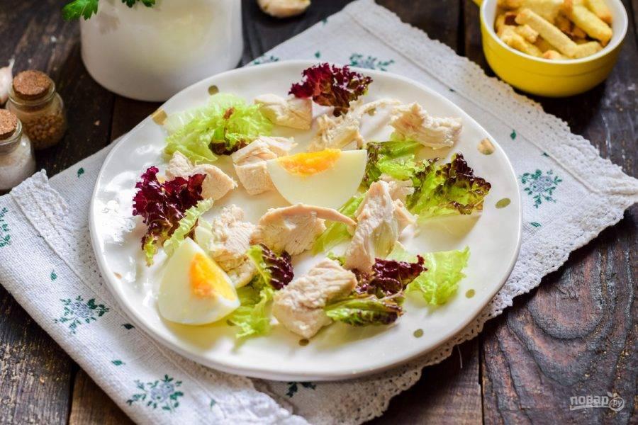 Салатные листья сполосните и просушите, порвите руками и выложите на тарелку. Разложите также кусочки курицы и яйцо.