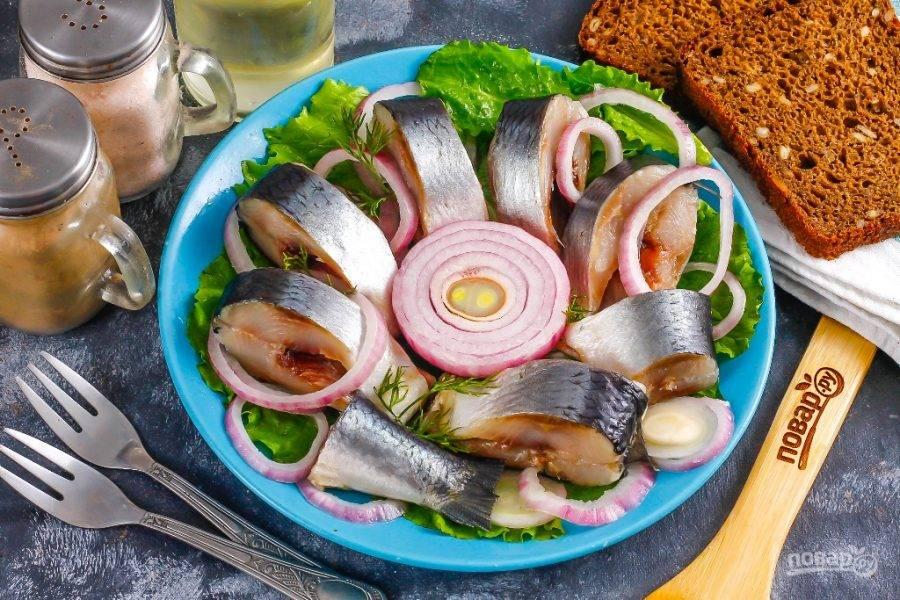 Нарежьте засоленную сельдь порционными кусочками и выложите на тарелку. Нарежьте очищенный лук кольцами, добавьте к рыбе и сбрызните растительным маслом. Подайте к столу.