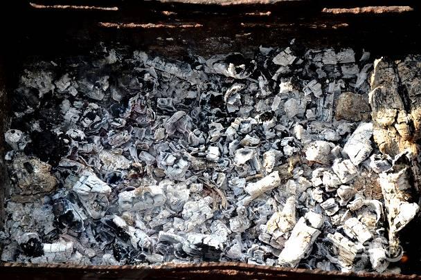 Угли должны хорошо прогореть, чтобы не было огня.