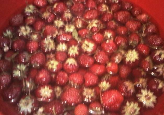 Промываем отобранные ягоды в тазике или глубокой миске небольшими порциями, чтобы не повредить их.