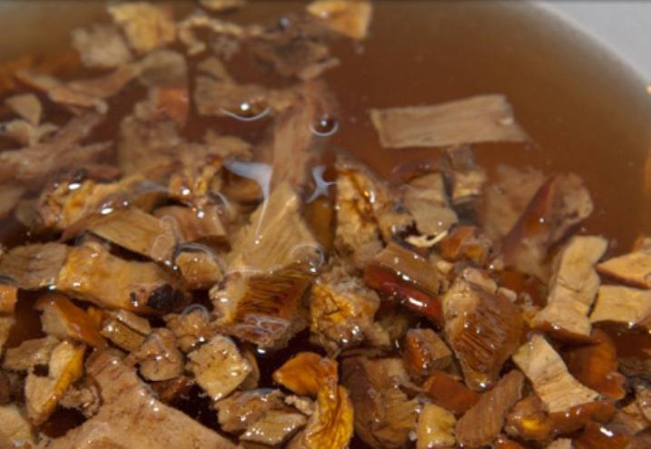 Воду, в которой отмокали грибы, процедите и поставьте на огонь. Положите в неё порезанные грибы.