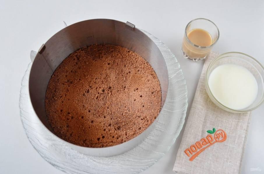 12. Для пропитки используйте сливки и ликер по вкусу. Корж уберите в морозилку.