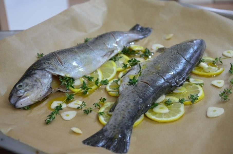 Рыбку разморозьте, помойте, почистите, сделайте надрезы на шкурке - чтобы она не полопалась в процессе запекания.  Застелите форму фольгой (можно снизу пергаментом). Выложите лимон и чесночок. Сверху - рыбку, смазанную в оливковом масле.