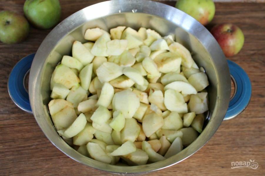 Яблоки моем, чистим и нарезаем кусочками. Высыпаем в кастрюлю с толстым дном или сотейник. Добавляем немного воды и ставим на минимальный огонь.