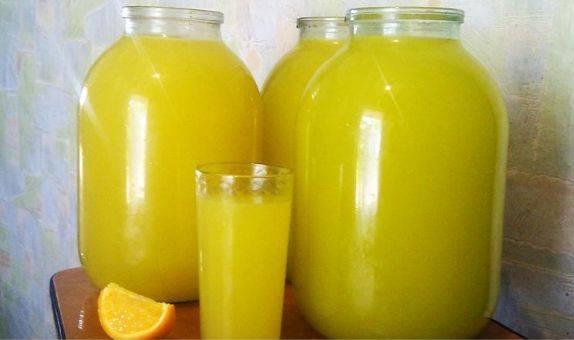 Теперь заливаем перекрученные апельсины 3 литрами холодной воды и настаиваем минут 15-20. Затем процеживаем и добавляем сок лимона и сахар. Хорошенько размешиваем и разбавляем водой до нужного вам вкуса. Воду можно брать минеральную, кипяченую и просто с колодца - на ваш вкус. Поставьте лимонад в холодильник на часик, чтобы он настоялся.