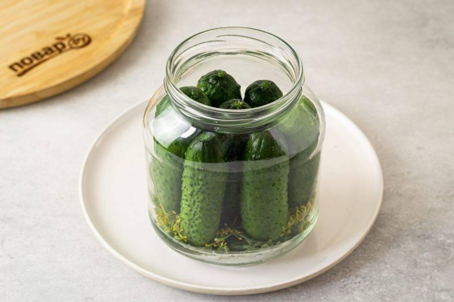 На дно чистой банки выложите подготовленную засолочную зелень, перец горошком и чеснок. Затем плотно выложите огурцы.