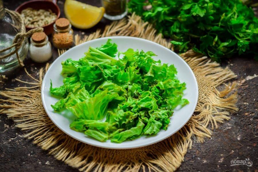 Листья салата ополосните и просушите. После нарвите салат руками. Выложите салат на тарелку.
