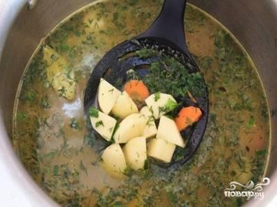 Теперь сварите бульон. В воду добавьте лук  и морковь, через 7 минут влейте ещё полстакана воды, доведите её до кипения. Одновременно варите картофель до полуготовности. Затем  картошку, укроп и петрушку добавьте к остальным овощам.