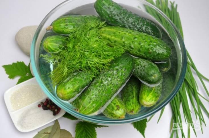 Огурцы и зелень тщательно промойте.