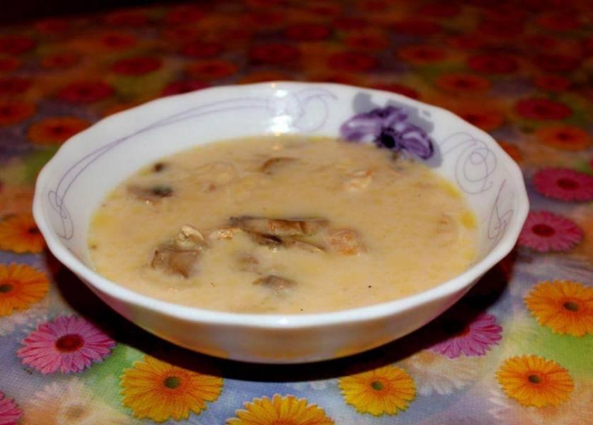 4. В уже готовый сливочный суп домешиваем грибную заправку - и подаем! Приятного аппетита!