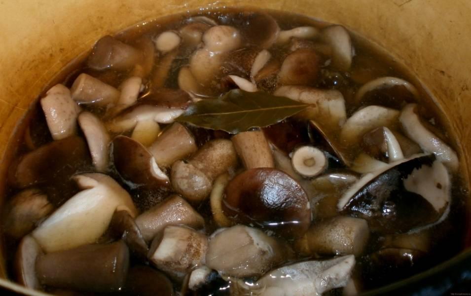 Залейте грибы горячей водой, доведите до кипения и варите 5 минут. Затем откиньте в дуршлаг и промойте грибы холодной водой. Заливаем подберезовики литром горячей воды, добавляем специи и пряности, лимонную кислоту. Доведите до кипения, проварите 10 минут и добавьте соль, сахар и укроп. Варите на медленном огне еще 15 минут.