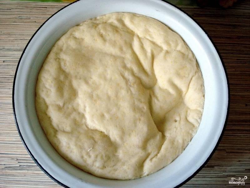 Подошедшее тесто делим на 2 части, каждую раскатываем в колбасу и делим на 8 частей (всего 16 пирожков).