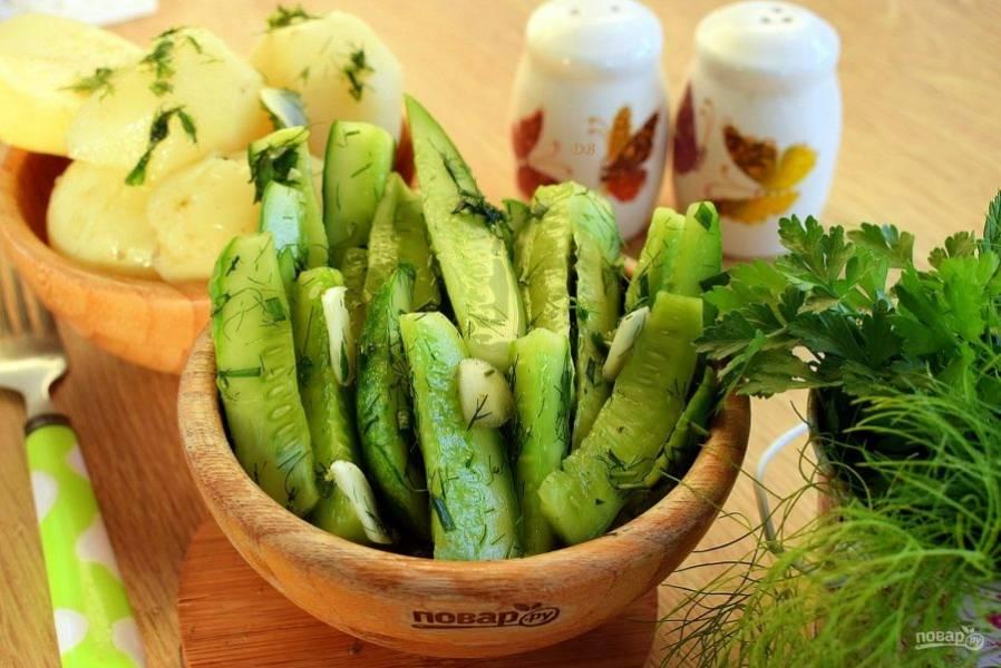 Подавайте малосольные огурчики с нерафинированным растительным маслом к молодому картофелю. Приятного аппетита!