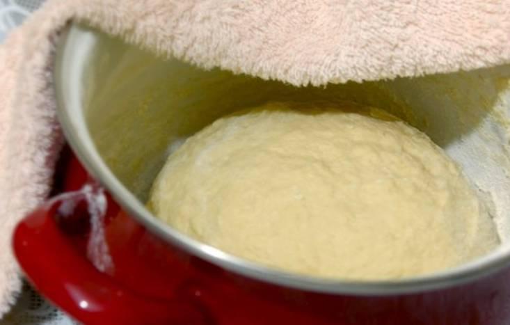 Тесто можно положить в глубокую тарелку или в кастрюлю, накрыть полотенцем.