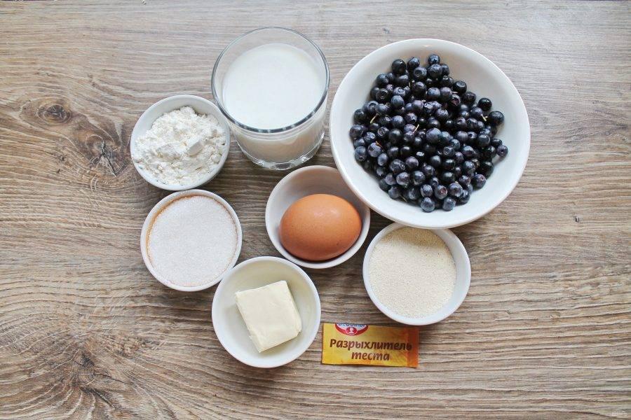 Подготовьте все необходимые ингредиенты для приготовления манника с черникой. Чернику переберите, вымойте и обсушите.