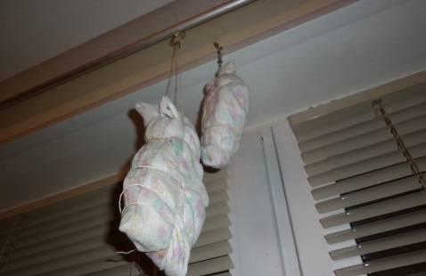 Плотно заворачиваем кусок мяса в марлю в несколько слоев. Если марли нет, то можно завернуть и в кусок ткани (для этого подойдет хлопок). Затягиваем не слишком плотно любой веревкой, подвешиваем к потолку в хорошо проветриваемом помещении на 2 недели. Через 2 недели можно снимать наш сверток и нарезать мясо.
