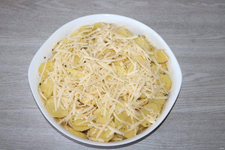 Сверху посыпьте тёртым сыром. Поставьте в разогретую до 200 градусов духовку.