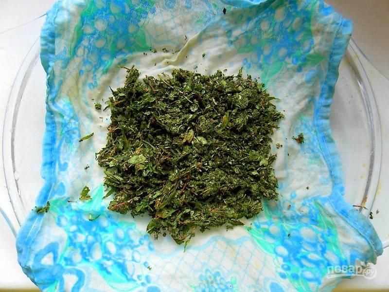 Пропустите листья через мясорубку с самыми крупными ячейками. Разложите на влажной ткани в один слой, сверху накройте еще одной влажной тканью.