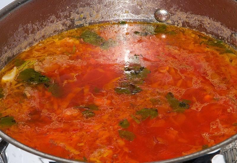 10. Вот и весь простой рецепт капустного борща. Осталось дополнить его свежей измельченной зеленью и можно подавать к столу.
