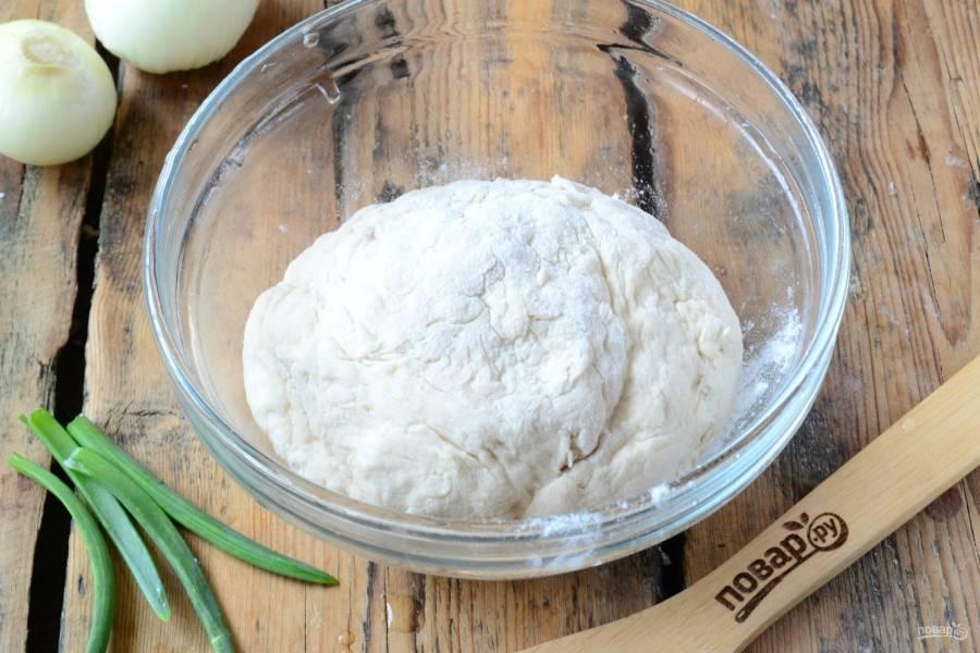 Затем добавьте соль и муку, замесите мягкое тесто. Оставьте его в теплом месте без сквозняков на 30-45 минут.
