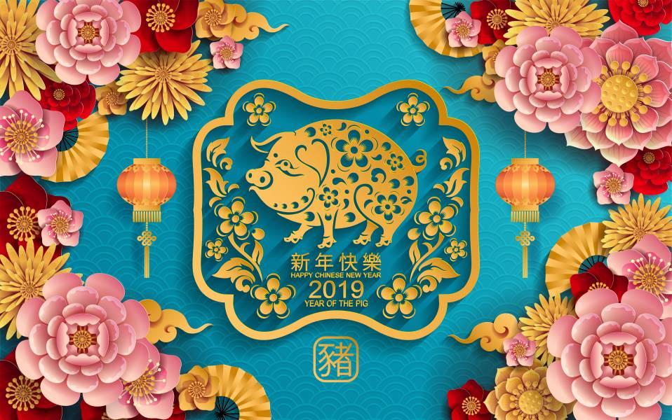 Что приготовить на Год Свиньи 2019?