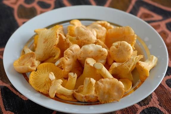 Первым делом хорошенько промываем лисички и нарезаем их на небольшие кусочки, маленькие грибочки можно оставить целыми. Теперь выкладываем лисички на сковороду, солим их и жарим на огне выше среднего, пока из грибов не уйдет лишняя влага.