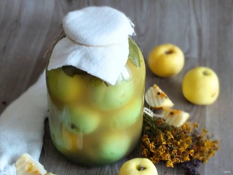 Моченые яблоки в банках на зиму