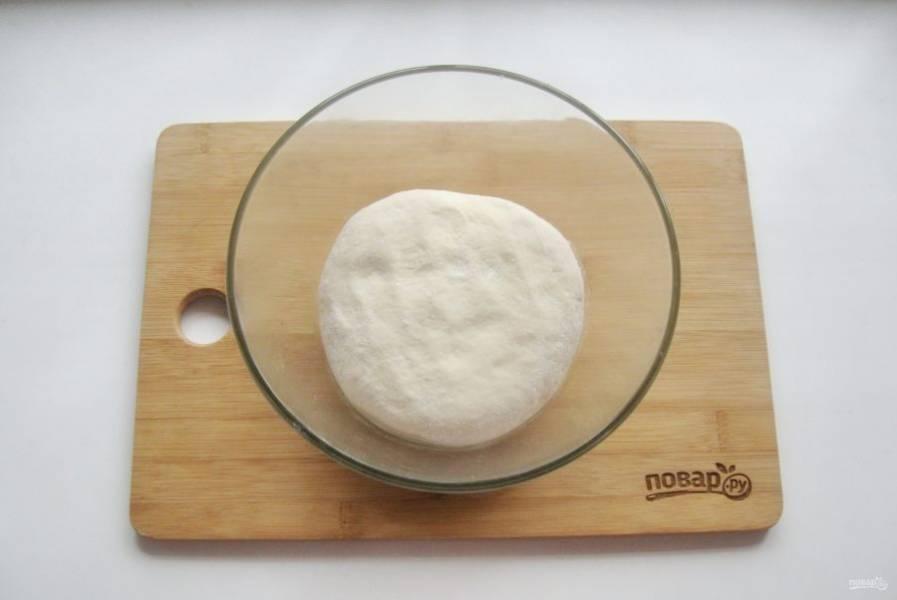 Замесите мягкое, эластичное, не липнущее к рукам тесто. Накройте миску с тестом и поставьте в теплое место.