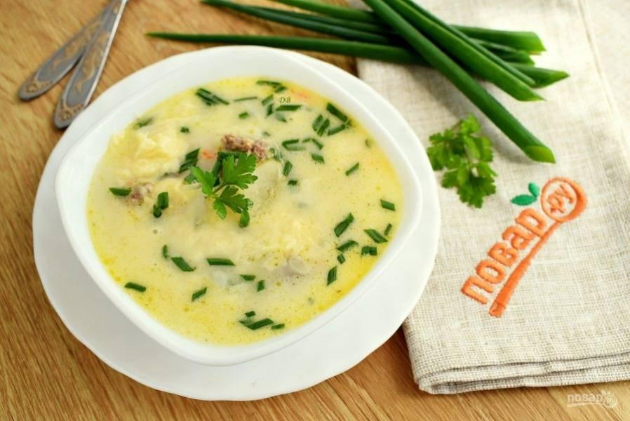 При подаче супа добавьте мелко нарезанные зеленый лук и петрушку. Приятного аппетита!