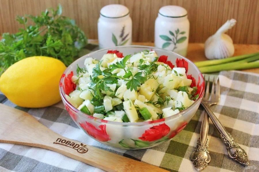 Турецкий картофельный салат готов. Подавайте на закуску.