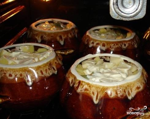 10. Сверху разместите картофель, нарезанный средними кубиками. Залейте небольшим количество воды так, чтобы она его не покрывала. Сверху выложите картофель промажьте всё майонезом.