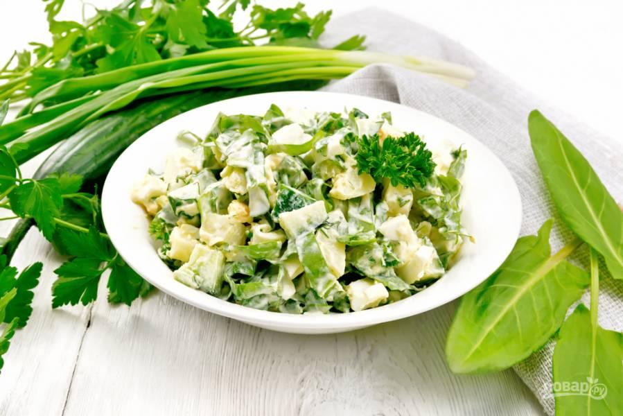 5 полезных салатов с весенней зеленью
