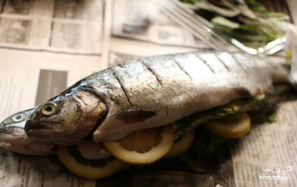 3. Солью и перцем натрите рыбу со всех сторон и немного взбрызните соком лимона. Сделайте по поверхности небольшие надрезы. С помощью кисточки смажьте небольшим количеством оливкового масла. В таком виде подержите рыбу около получаса перед приготовлением.