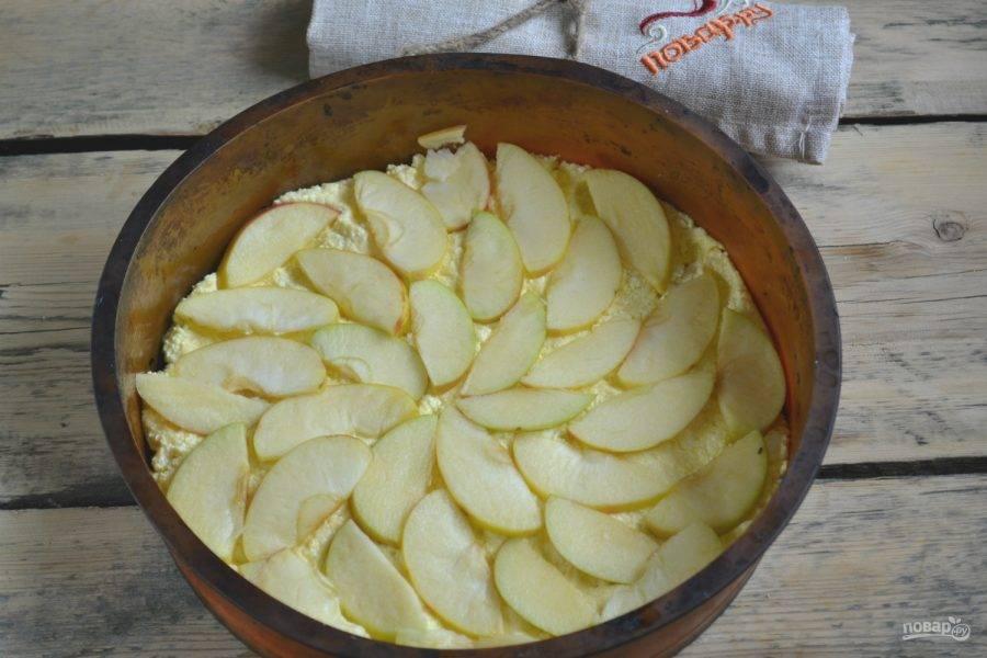 6.Яблоки выложите в один слой плотно друг к другу.