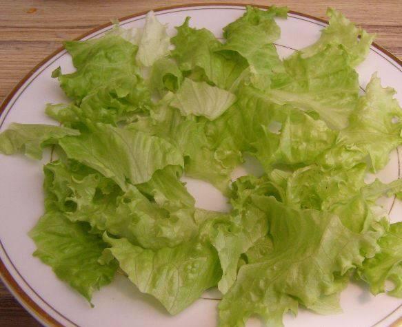 Салатные листья промойте, порвите руками и выложите на тарелку.