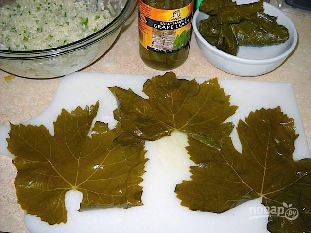 3.Ранее подготовленные листья выложите на стол.