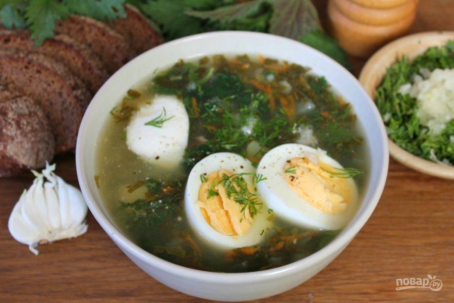 Зеленый борщ насыпаем в глубокие тарелки. Добавляем вареные яйца, укроп с чесноком и молотый перец. Приятного аппетита!
